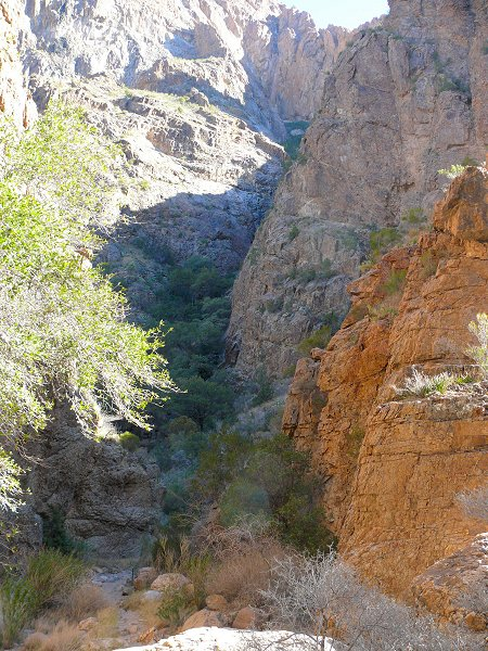10-trail-view