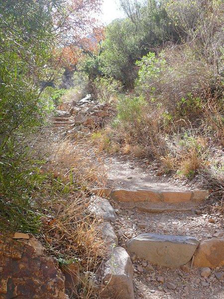 11-trail-view