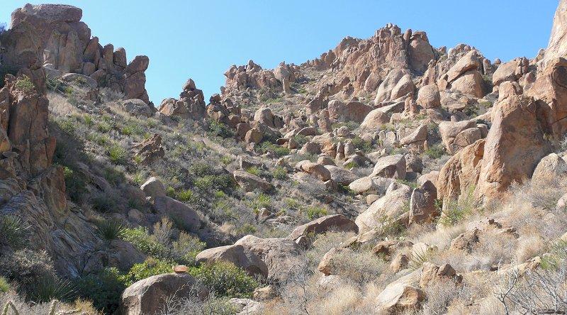 grapevine-trail-5