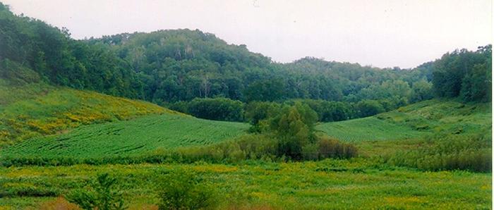Center Valley 2000