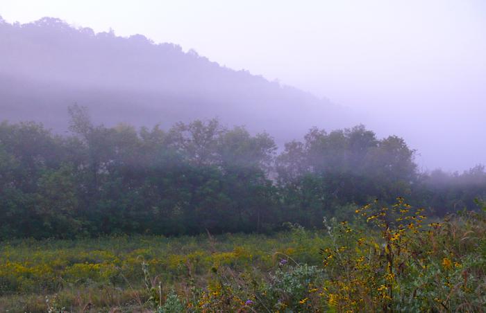 Center Valley