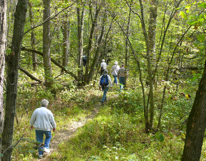 a walk in the woods essay questions