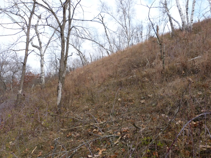11-5-12 west slope 1