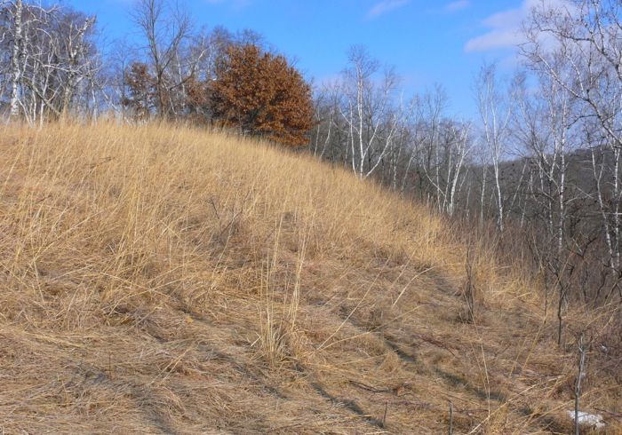 2-17-12 east slope 1