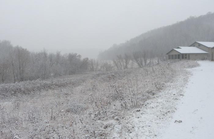 snow 11-20-13