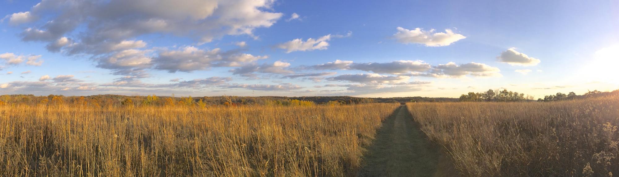 11-1-13 Western Prairie panorama lg