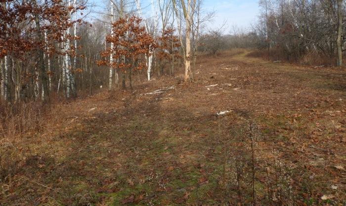 11-10-12 1 aspen grove project