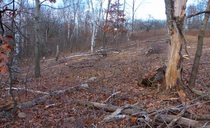 11-2-12 1 aspen grove project