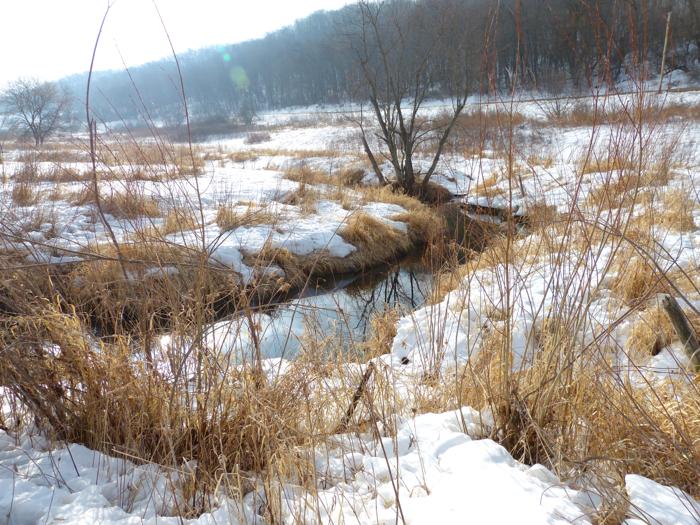 creek 3-20-14