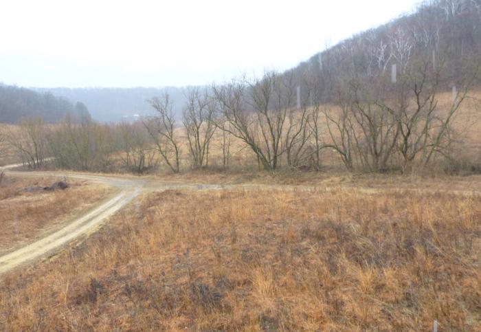 center valley 4-12-14