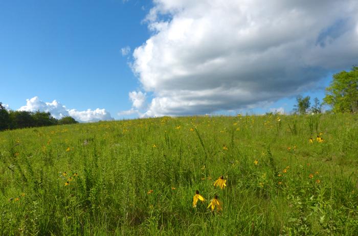 western prairie clouds